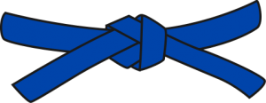bluebelt-300x116-1.png